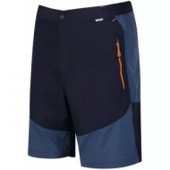 Шорты Regatta Sungari Shorts